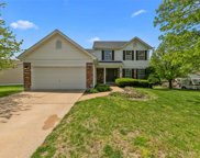 10211 Concord Valley, St Louis image