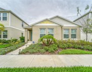 12812 Crested Iris Way, Riverview image