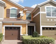 9513 Silver Buttonwood Street, Orlando image