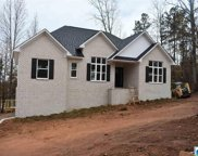3520 Smith Sims Rd, Trussville image