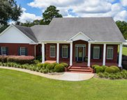 350 SW MOSSY OAK WAY, Lake City image