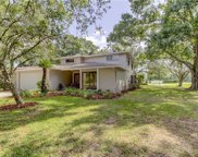 13701 Wilkes Dr, Tampa image