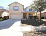 8814 Imperial Cross, Helotes image
