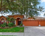 18103 Royal Forest Drive, Tampa image