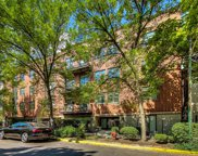 1830 N Winchester Avenue Unit #213, Chicago image