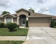 11447 Tee Time Cir, New Port Richey image