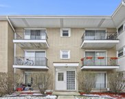 3847 West 47Th Street Unit 3F, Chicago image