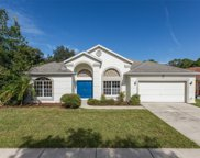 5013 Deer Lodge Road, New Port Richey image
