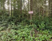 9502 110th Ave Ct, Anderson Island image