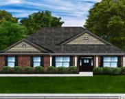 1216 Wood Stork Dr., Conway image