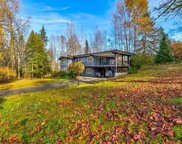 11208 252 Street, Maple Ridge image