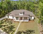 2242 River Forest Drive, Mobile image