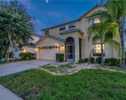 13019 Avalon Crest Court, Riverview image