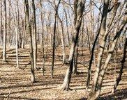 1025 Wildhurst Trail, Orono image