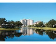 1001 Arbor Lake Dr Unit 1105, Naples image