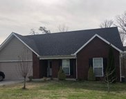 913 Thunder Creek Drive, Maryville image