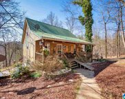 415 Mountain Springs Est, Odenville image