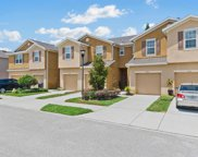 8723 Turnstone Haven Place, Tampa image