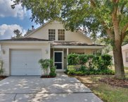 14913 Stag Creek Circle, Lutz image