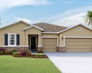 16921 Harvest Moon Way, Bradenton image
