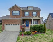 3032 Honeysuckle Dr, Spring Hill image