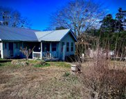 945 Cook Rd, Phil Campbell image