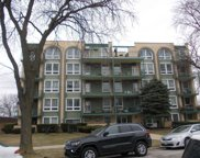 6141 West Higgins Avenue Unit 3C, Chicago image