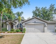 4517 Compass Oaks Drive, Valrico image