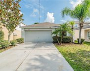 13732 Gentle Woods Ave, Riverview image