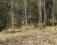 630 Pembrook Drive, Woodland Park image