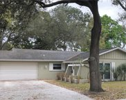 133 Country Villas Drive, Safety Harbor image
