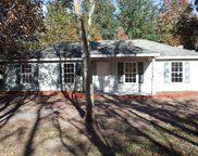 44165 SWALLOWFORK AVE, Callahan image