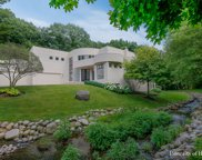 9515 Falling Waters Drive, Burr Ridge image