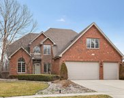 13028 West Creekside Drive, Homer Glen image