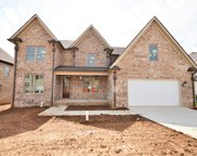 1006 Alpaca Drive (423), Spring Hill image