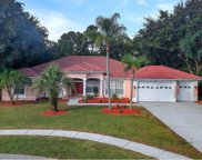 3886 Crescent Cove Place, Tarpon Springs image