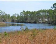 929 Mill Rd, Carrabelle image