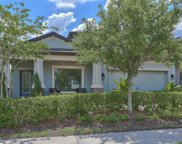 1680 Nature View Drive, Lutz image