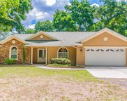 17148 Spring Valley Road, Dade City image