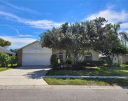 213 Mill Slough Road, Oviedo image