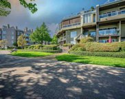 31 Reliance Court Unit 114, New Westminster image