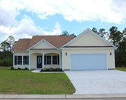 353 Basswood Ct., Conway image