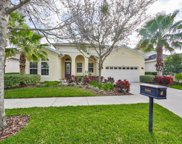 5206 Rosefinch Place, Lithia image