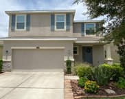 11612 Storywood Drive, Riverview image