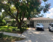 1039 Spanish Oaks Boulevard, Palm Harbor image