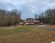 1021 County Road 578, Rogersville image