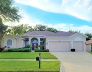 4249 Fawn Meadows Circle, Clermont image