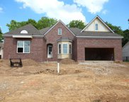 706 Rain Meadow Ct, Lot 251, Spring Hill image