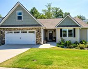 44 Macle Court, Travelers Rest image
