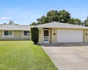 2316 Pepper Tree Court, Kissimmee image